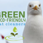 Green and Eco-Friendly Boat Cleaners and Soap Products